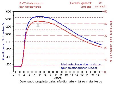 Veterinäramt - BVDV-MD Kalkulation6